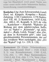 Auszug aus dem Historisches Ortsnamenlexikon von Schleswig-Holstein, Verfasser: Wolfgang Lauer, Karl Wachholz Verlag